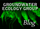 Groundwater Ecology Group - Blog