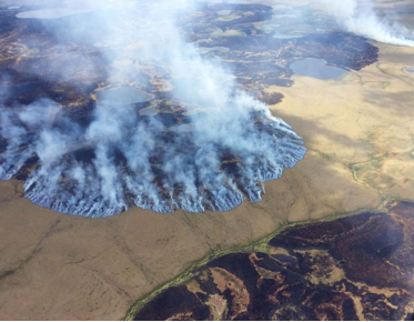 Tundra wildfire burn in Alaska on June 7, 2005 (Source: Matt Snyder—Alaska Division of Forestry/AP)