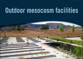 Outdoor mesocosm facilities
