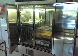 Incubator for cyanobacteria and bacteria cultures