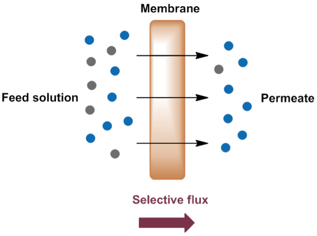 Figure 1. Membrane technology separation diagram.